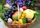 Allo Fruits